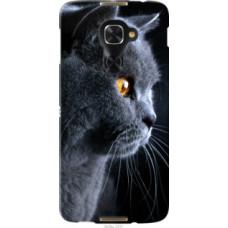 Чехол на Alcatel Idol 4 Pro Красивый кот (3038u-1537)