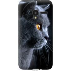 Чехол на Alcatel One Touch Pixi 3 4.5 Красивый кот (3038u-408)