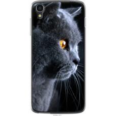 Чехол на Alcatel One Touch Idol 3 5.5 Красивый кот (3038u-321)