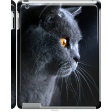 Чехол на Apple iPad 2/3/4 Красивый кот (3038c-25)