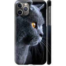 Чехол на Apple iPhone 11 Pro Max Красивый кот (3038c-1723)