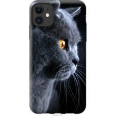Чехол на Apple iPhone 11 Красивый кот (3038u-1722)