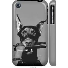 Чехол на iPhone 3Gs Доберман (2745c-34)
