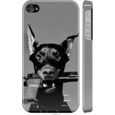 Чехол на iPhone 4 Доберман (2745c-15)