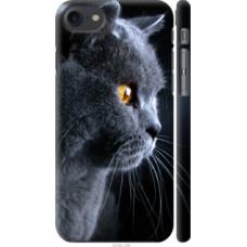 Чехол на Apple iPhone 8 Красивый кот (3038c-1031)
