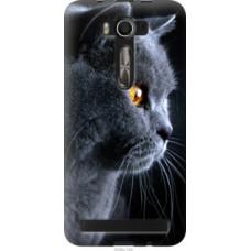 Чехол на Asus ZenFone 2 Laser 2 ZE550KL Красивый кот (3038u-124)