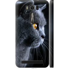 Чехол на Asus ZenFone 2 Laser ZE500KL Красивый кот (3038c-113)
