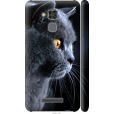 Чехол на Asus Zenfone 3 Max ZC520TL Красивый кот (3038c-442)