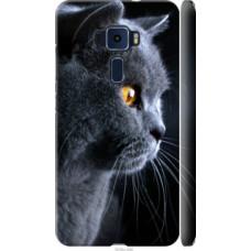 Чехол на Asus Zenfone 3 ZE552KL Красивый кот (3038c-448)