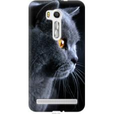 Чехол на Asus ZenFone Go TV ZB551KL Красивый кот (3038u-354)