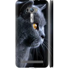 Чехол на Asus ZenFone Selfie ZD551KL Красивый кот (3038c-116)