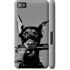 Чехол на Blackberry Z10 Доберман (2745c-392)