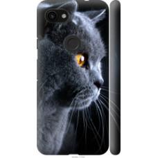 Чехол на Google Pixel 3a Красивый кот (3038c-1700)
