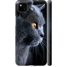 Чехол на Google Pixel 4A Красивый кот (3038c-1935)