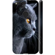 Чехол на Google Pixel Красивый кот (3038c-400)