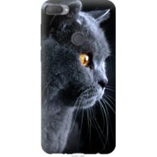 Чехол на HTC Desire 12 Plus Красивый кот (3038u-1485)
