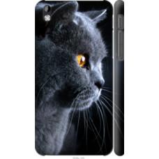 Чехол на HTC Desire 816 Красивый кот (3038c-169)
