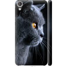 Чехол на HTC Desire 820 Красивый кот (3038c-133)