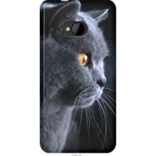 Чехол на HTC Desire 616 dual sim Красивый кот (3038u-670)