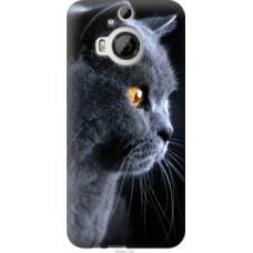 Чехол на HTC One M9 Plus Красивый кот (3038u-134)