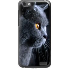 Чехол на HTC One V t320e Красивый кот (3038u-227)
