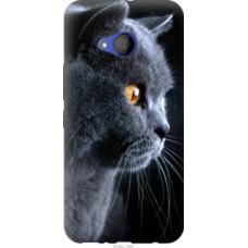 Чехол на HTC U11 Life Красивый кот (3038u-1385)