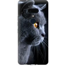 Чехол на HTC U12 Plus Красивый кот (3038u-1712)