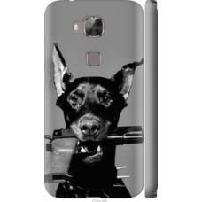 Чехол на Huawei G8 Доберман (2745c-493)