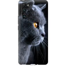 Чехол на Huawei Honor 30 Pro Красивый кот (3038u-1920)