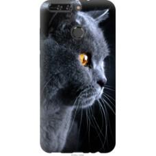 Чехол на Huawei Honor V9 / Honor 8 Pro Красивый кот (3038u-1246)