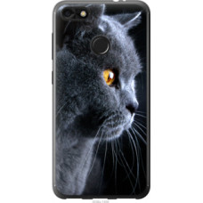Чехол на Huawei Nova Lite 2017 Красивый кот (3038u-1400)