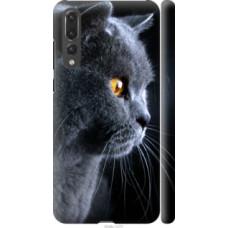 Чехол на Huawei P20 Pro Красивый кот (3038c-1470)