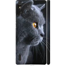 Чехол на Huawei Ascend P7 Красивый кот (3038c-49)