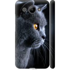 Чехол на Huawei Y3 2017 Красивый кот (3038c-991)