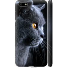 Чехол на Huawei Y5 2018 Красивый кот (3038c-1500)