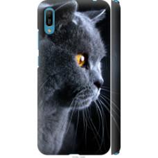 Чехол на Huawei Y6 2019 Красивый кот (3038c-1666)