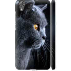 Чехол на Huawei Y6 II Красивый кот (3038c-338)