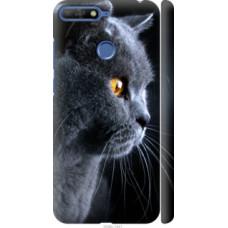 Чехол на Huawei Honor 7C Красивый кот (3038c-1411)
