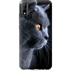 Чехол на Huawei Y8s Красивый кот (3038u-2027)