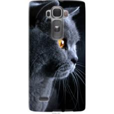 Чехол на LG G Flex2 Красивый кот (3038u-287)
