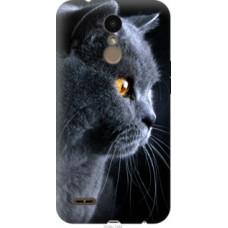 Чехол на LG K10 2018 Красивый кот (3038u-1382)