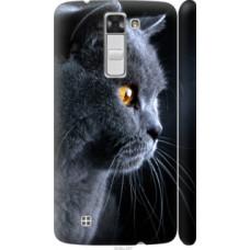 Чехол на LG K8 K350E Красивый кот (3038c-297)