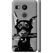 Чехол на LG Nexus 5X H791 Доберман (2745c-150)