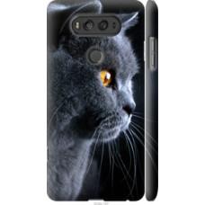 Чехол на LG V20 Красивый кот (3038c-787)