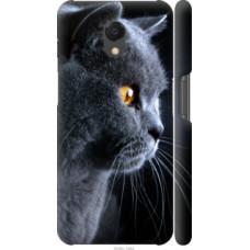 Чехол на Meizu M6s Красивый кот (3038c-1364)