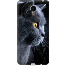 Чехол на Meizu Metal Красивый кот (3038u-507)