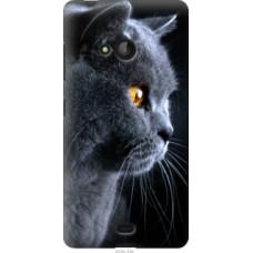 Чехол на Microsoft Lumia 540 Dual SIM Красивый кот (3038u-246)