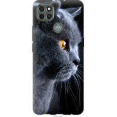 Чехол на Motorola G9 Power Красивый кот (3038u-2229)