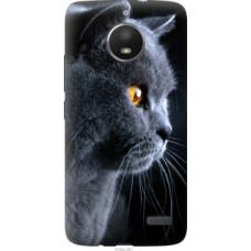 Чехол на Motorola Moto E4 Красивый кот (3038u-981)