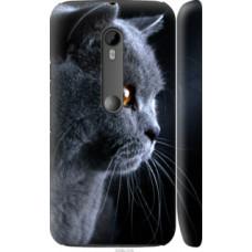 Чехол на Motorola Moto G3 Красивый кот (3038c-318)
